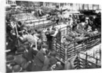 Bananas Arriving at Dock by Corbis