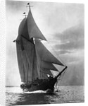 Auxiliary Schooner with Full Sails by Corbis