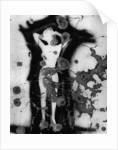 Female Figure Graffiti by Corbis