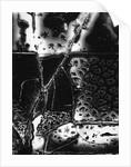 Broken Glass by Brett Weston
