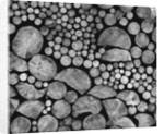 Lumber by Corbis