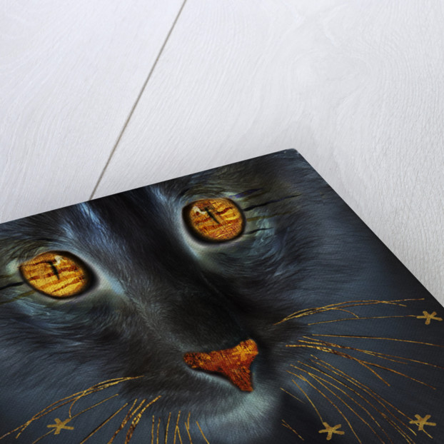 Cosmic Cat by Dee Smart