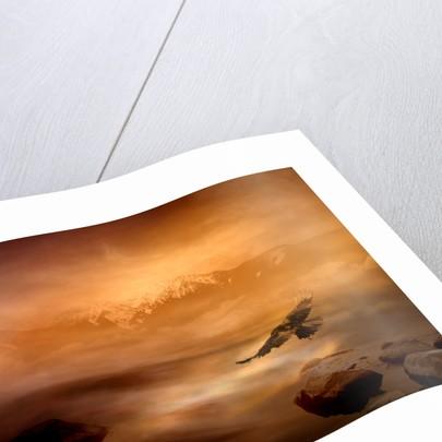 night is day by Alexandra Stanek