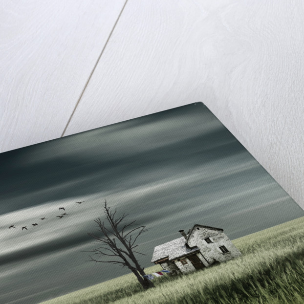 Living in green by Christine Ellger