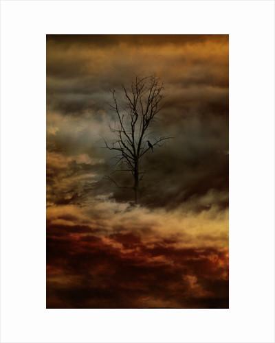 beautiful silence by Alexandra Stanek