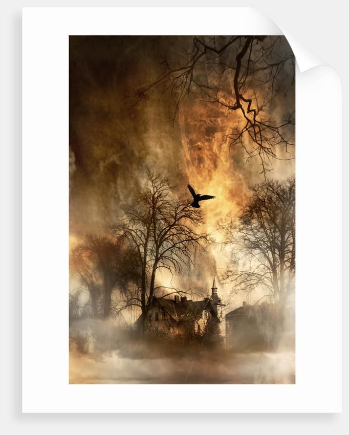 haunted by Alexandra Stanek