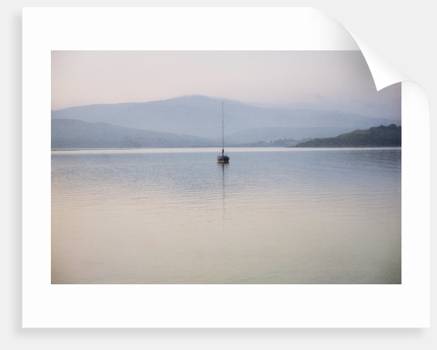 Sailboat, Bantry, Ireland by Dee Smart