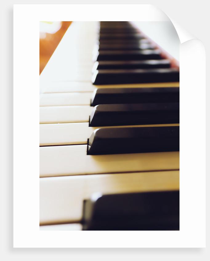Piano keys by Phil Payne