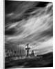 forgotten lives by Alexandra Stanek