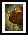 Carousel by Ricardo Demurez