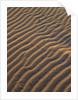 dunes by Wolfgang Simlinger