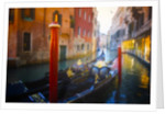 A Grand Ride, Venice by Dee Smart
