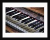 Piano keys by Stuart Brill
