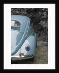 beetle2 by Wolfgang Simlinger