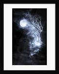 dreamescape by Alexandra Stanek