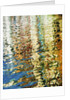 Venetian Water Colors 8 by Dee Smart
