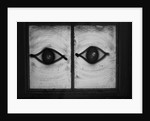 All seeing eyes by SubUrban Images