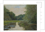 View of a lily pond in a woodland by Anonymous