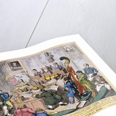 Exhibition at the Royal Horticultural Society, London by George Cruikshank