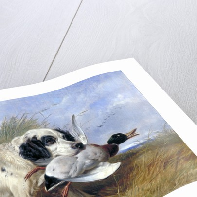 Dog with Wild Duck by Richard Ansdell