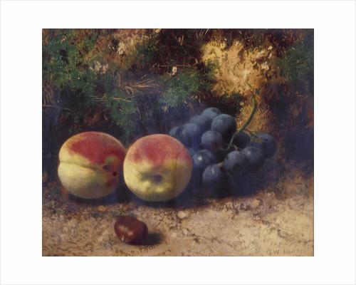 Peaches and Grapes by Jan Davidsz de Heem