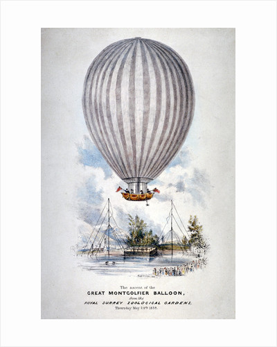 Hot air balloon ascending over Surrey Zoological Gardens, Southwark, London by Anonymous
