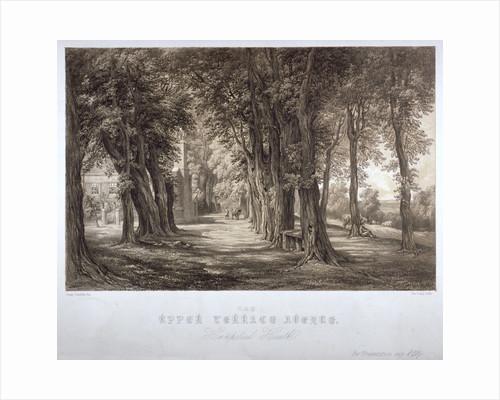 The Upper Terrace Avenue, Hampstead Heath, London by John Constable