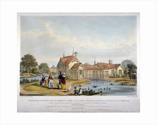 Cottage erected in St James's Park for the Ornithological Society of London, Westminster by John Burges Watson