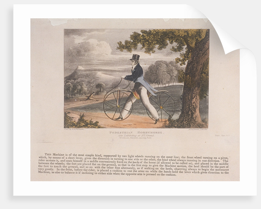 View of a 'Pedestrian Hobbyhorse by Anonymous