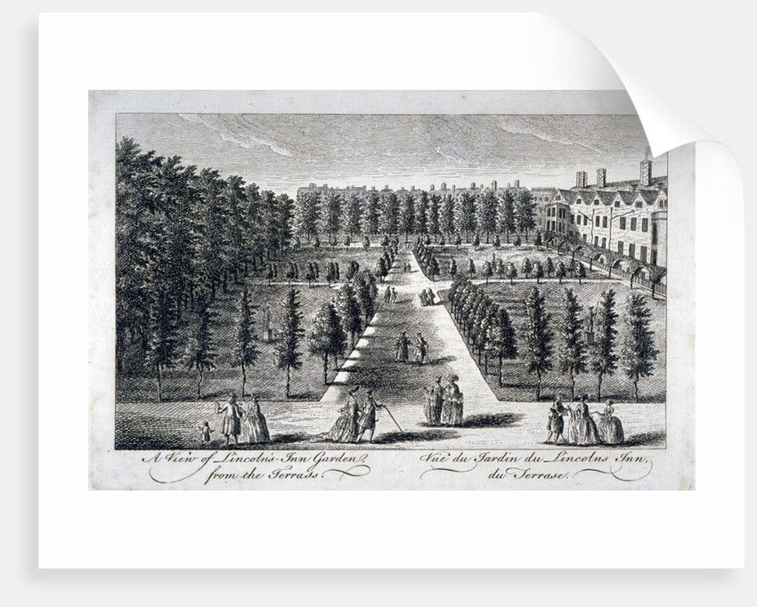 View of Lincoln's Inn Garden from the terrace, Holborn, London by