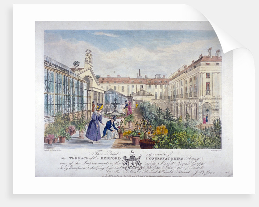 Bedford Conservatories' terrace at Covent Garden Market, Westminster, London by Henry Pyall