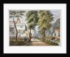 View of the Flora Tea Gardens, Bayswater, London by Anonymous