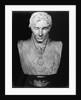 Portrait bust of Viscount Horatio Nelson, British naval commander by Anne Seymour Damer