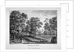 Rosamond's Pond, St James's Park, Westminster, London by M Merigot