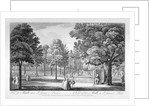 St James's Park, Westminster, London by William Henry Toms