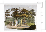 View of a drinking well, Hyde Park, Westminster, London by William Pickett
