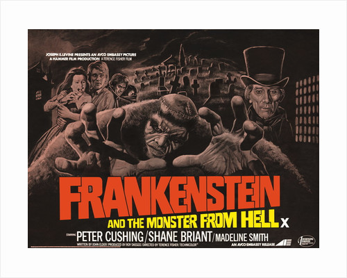 Frankenstein and the Monster from Hell by Bill Wiggins