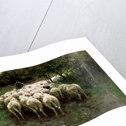 Sheep in the Forest, 19th century. by Anton Mauve