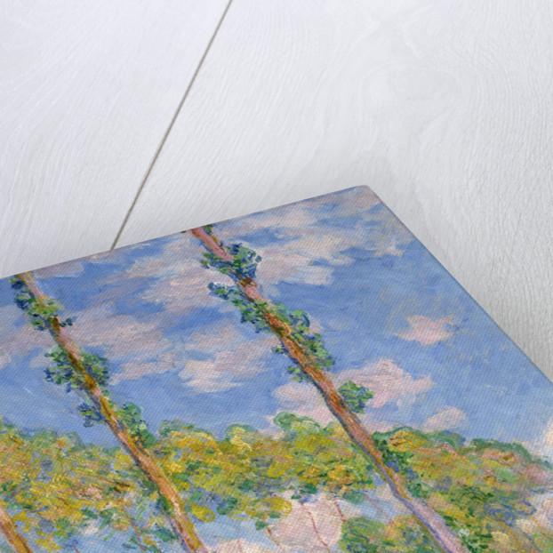 Poplars in the Sun by Claude Monet