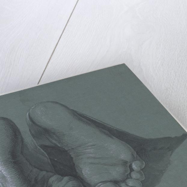Study of Two Feet, c.1508 by Albrecht Dürer