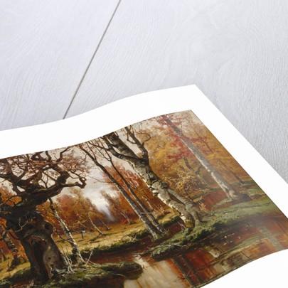 Autumn, 1881 by Juli Julievich von Klever