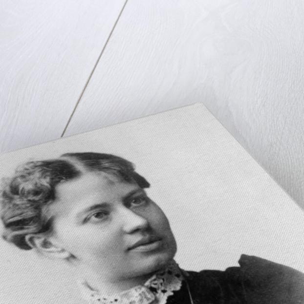 Sofia Vasilyevna Kovalevskaya by Anonymous