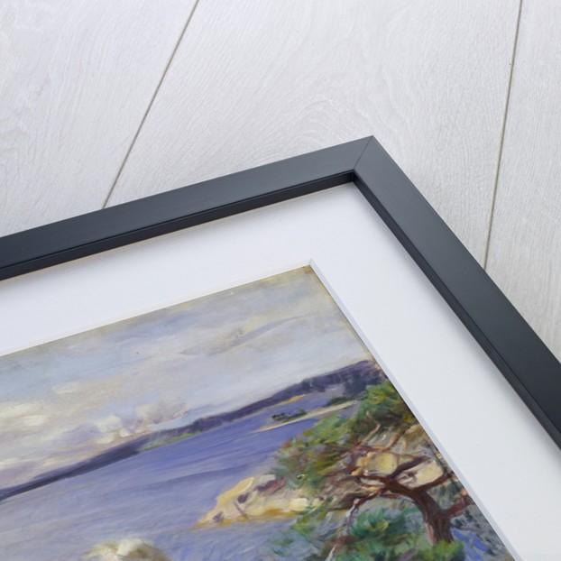 In the Skerries by Anders Leonard Zorn