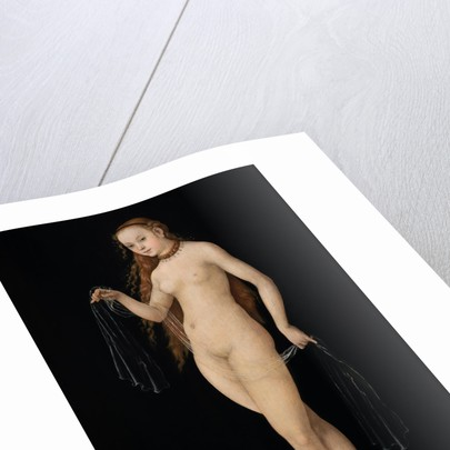 Venus, 1531 by Anonymous