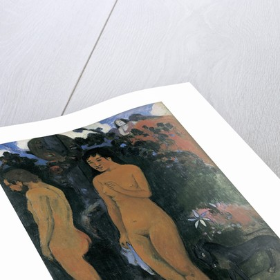 Adam and Eve (Adam et Ève), 1902 by Anonymous
