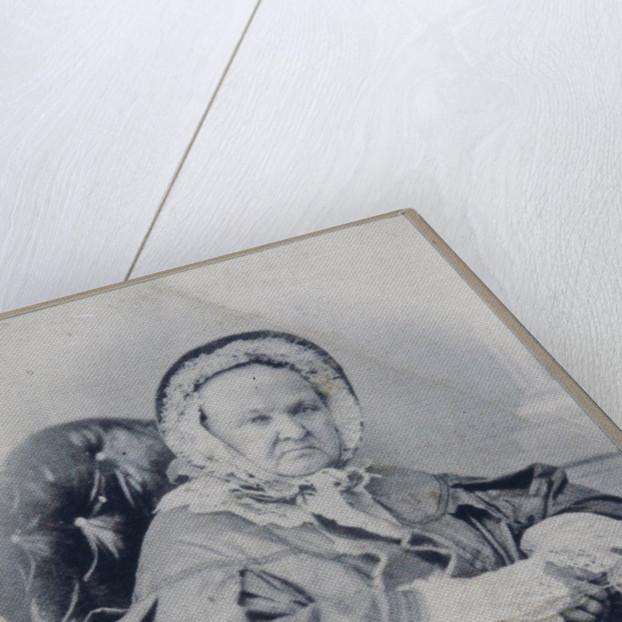 Portrait of Varvara Petrovna Turgeneva, née Lutovinova by Anonymous