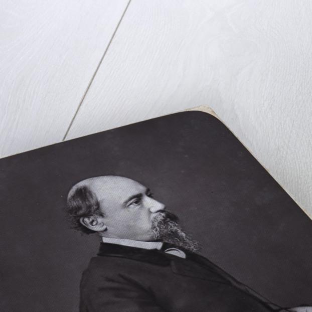 Portrait of the poet Nikolay Alexeyevich Nekrasov, Early 1870s by Anonymous
