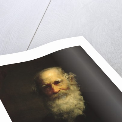 William Cullen Bryant, 1876 by Thomas Le Clear