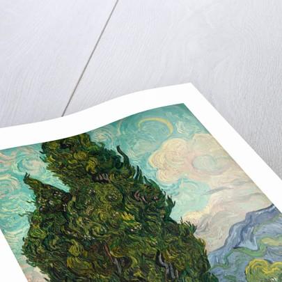 Cypresses, 1889 by Vincent van Gogh