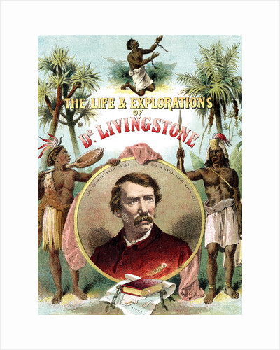 David Livingstone, Scottish missionary and explorer of Africa, c1875 by Unknown